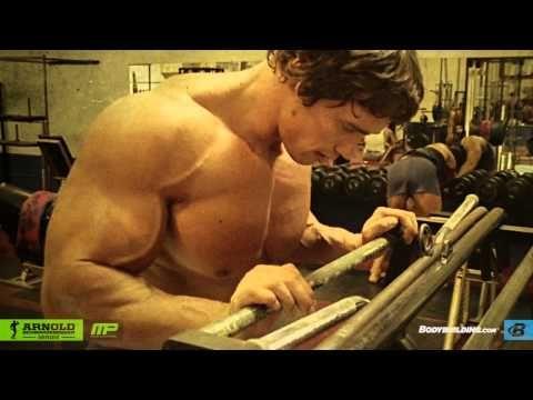 The 25 best arnold blueprint ideas on pinterest arnold workout arnold schwarzenegger blueprint trainer mass training overview bodybuilding malvernweather Image collections