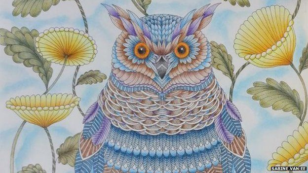 116 Best Images About Millie Marotta Colouring Books On Pinterest