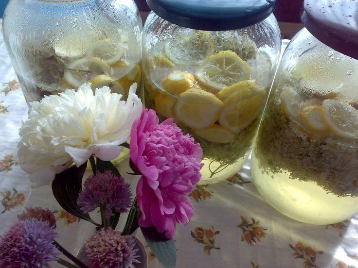 Květy bezinek vytřepeme(bývá tam různá havěť),opláchneme vodou a necháme okapat.Ve vodě (2 l)´si rozpustíme cukr, necháme zchladnout a nalijeme...