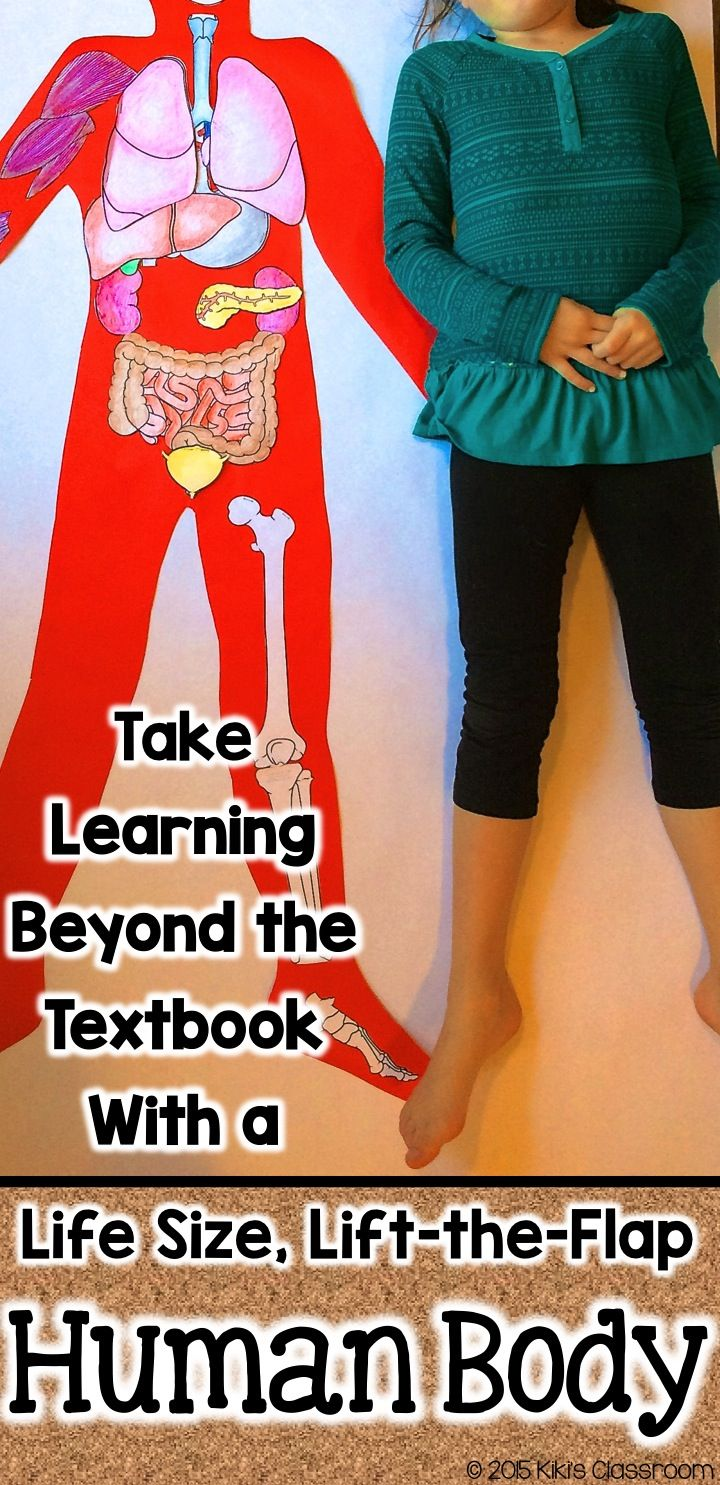 Human Body Project • Everything included! Reading passages, graphic organizers, & easy-to-follow directions for a life-size, lift-the-flap, hands-on human body project that incorporates reading and writing.