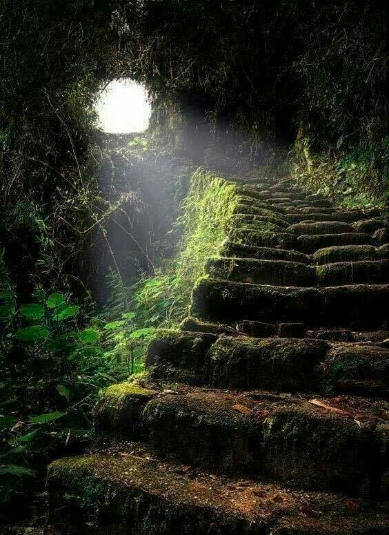 Stairway to Heaven, the ancient Inca Trail leading to Machu Picchu in Peru.