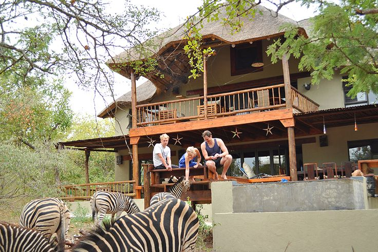 Marloth Kruger Bush Villa - Marloth Park, Kruger National Park & Lowveld, Mpumalanga  Holiday home with lots of privacy situated in the Marloth Park Conservancy, which is next to the Crocodile River which boarders the Kruger National Park where the Big Five and other animals can be seen in the river bed.  See more on http://www.wheretostay.co.za/marlothkrugerbushvilla/