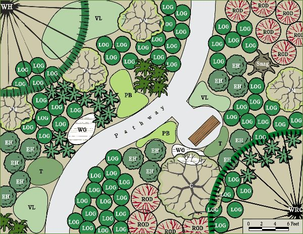 Landscape plan for Pacific NW yards that are moist and shady. LOG = low Oregon Grape, T = Trillium, WG = Wild Ginger, ROD = Red Osier Dogwood, EH = Evergreen Huckleberry, VM = Vine Maple. I would add Salal. :)