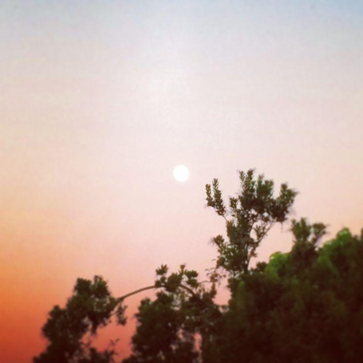 Una meravigliosa luna che sorge solitaria nel cielo rosso fuoco del tramonto…
