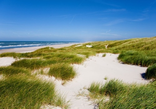 Sea side - Denmark