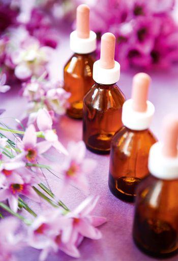 Bach Flowers, Flores de Bach, Terapias Your Care