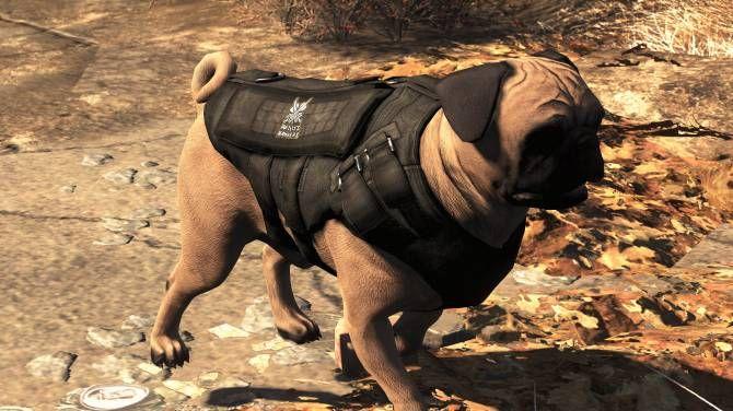 Fallout 4 Dog Mods