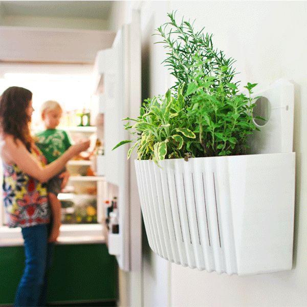 Best 25 Wall planters ideas on Pinterest