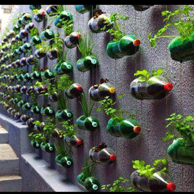 20 Creative Diy Vertical Gardens For Your Home: Soda Bottle Herb Garden. I So Wish I Had The Space To Do