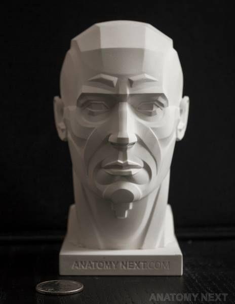 https://www.facebook.com/Anatomy4Sculptors/photos/pcb.954025404696609/954024984696651/?type=3