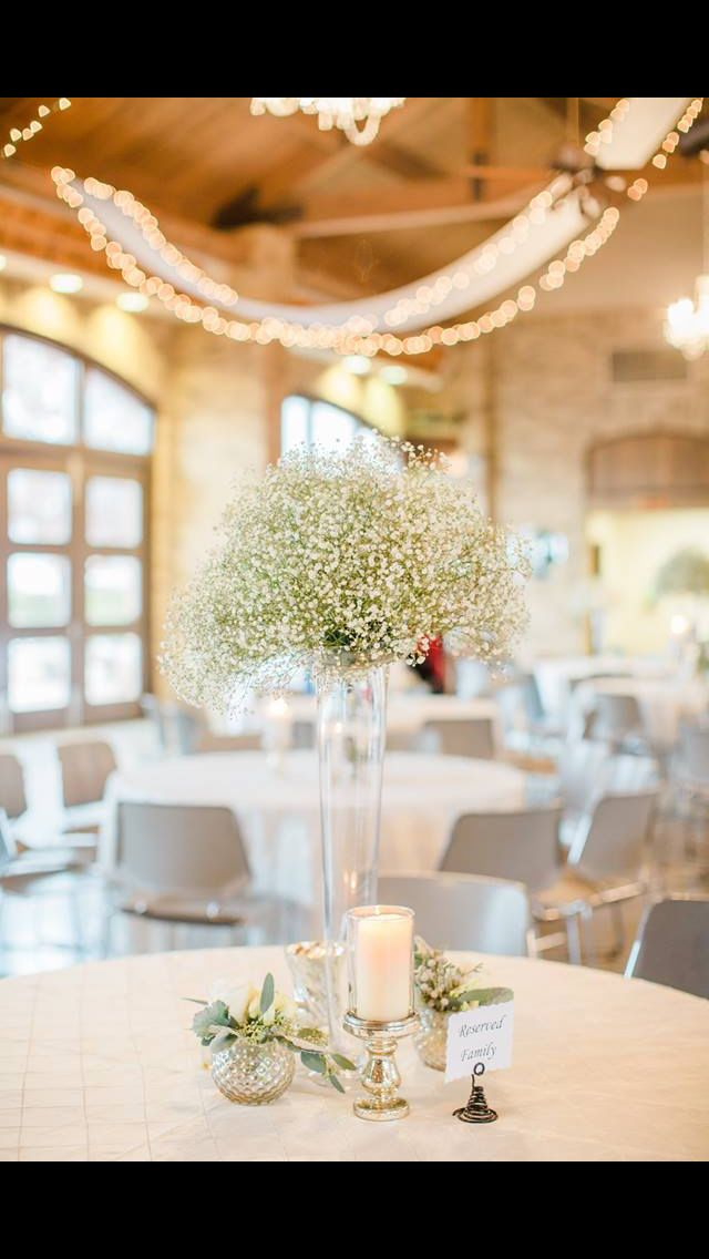 Babys Breath Topiary Designed By Janelda Moore Of Le Chateau Venue Lubbock Tx Photo Katie Rivera Photography