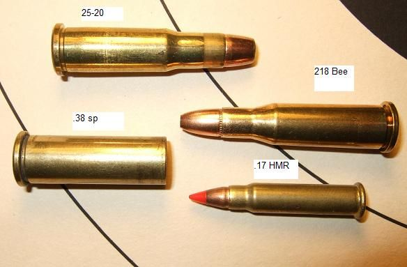 218 bee vs 17 hmr vs 25 20 vs 38 special bullet caliber comparisons pinterest bees. Black Bedroom Furniture Sets. Home Design Ideas