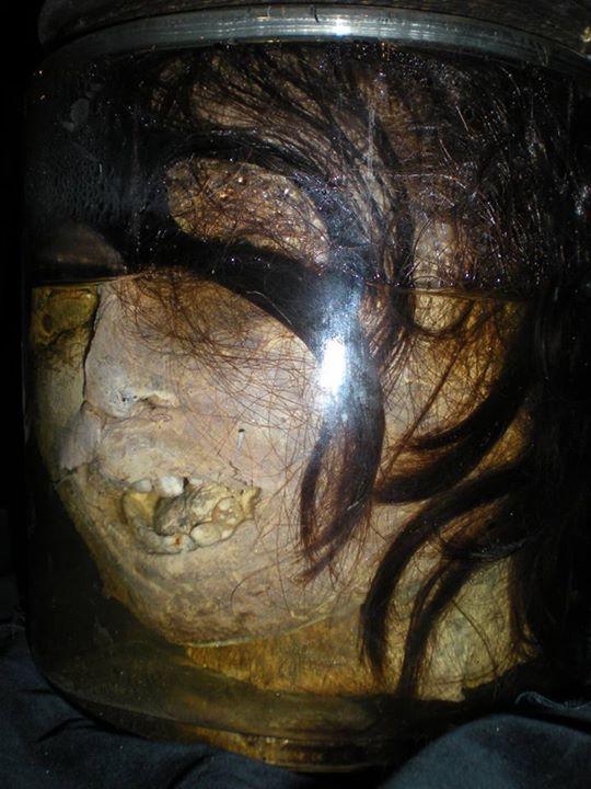 La testa di una donna in piena saponificazione all'interno di un recipiente di vetro... proprio come quella ritrovata dall'agente dell'FBI Clarice Starling nel famoso film Il Silenzio degli Innocenti. #saponificazione #ilsilenziodegliinnocenti #silenceofthelambs
