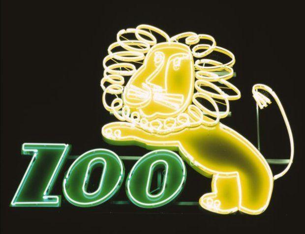 'Zoon' neon in Warsaw, Poland - Photography by Ilona Karwińska