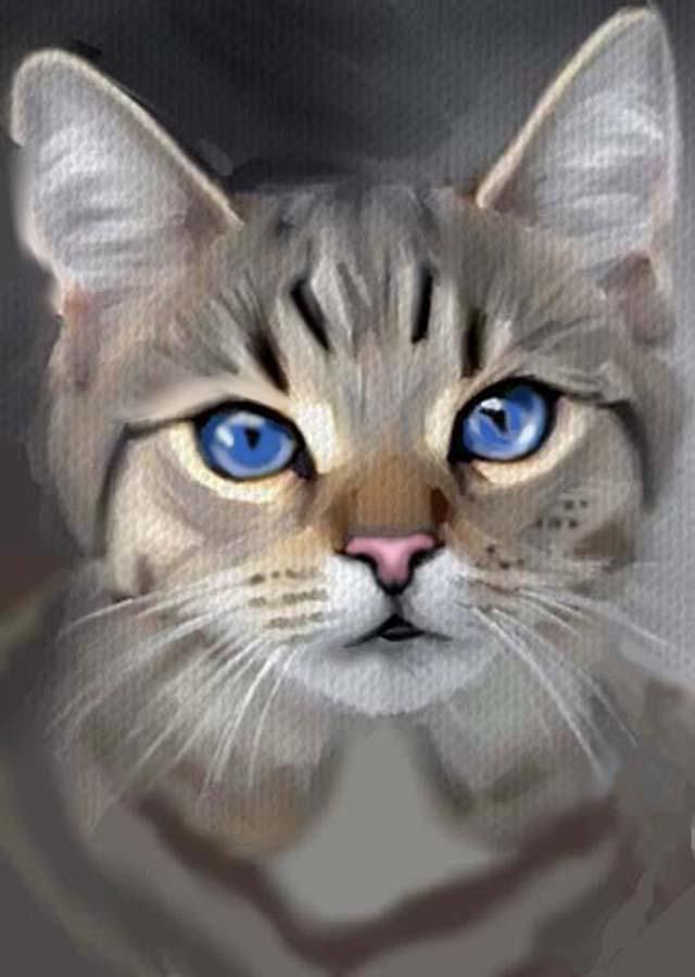 ACEO OIL PAINTING  CAT GREY TABBY BLUE EYES        BY BRADBERRY #Expressionism