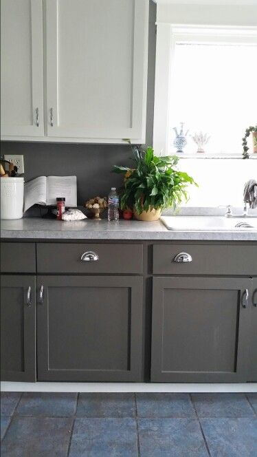 Lower cabinets - SW Porpoise