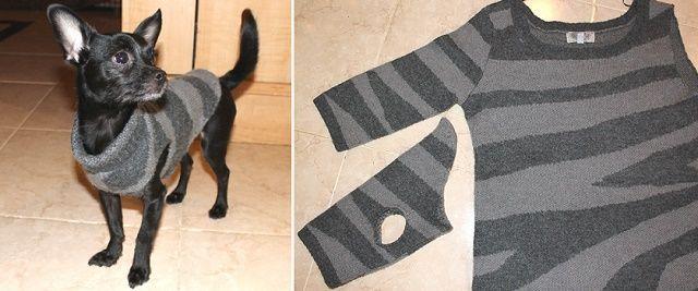 DIY Chic Dog Sweater