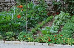 A.Petzold - Rustica - Jardin du Feyel
