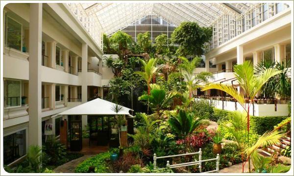 Крытый внутренний двор - тайский зимний сад