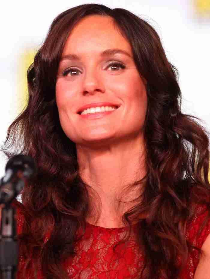 Sarah Wayne Callies Shawn Doyle to star in miniseries 'Unspeakable'  #SarahWayneCallies #MichaelShanks #ShawnDoyle #Unspeakable