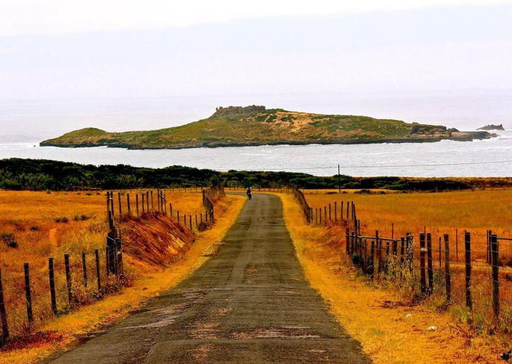 Ilha Pessegueiro Portugal