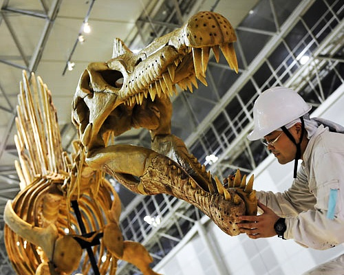 the spinosaurus my favorite dinosaur We learn all about several species of dinosaurs - edmontosaurus, triceratops,  brachiosaurus  my favorite dinosaur is the baby plesiosaur.