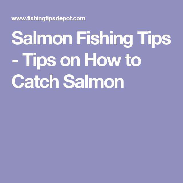 Salmon Fishing Tips - Tips on How to Catch Salmon