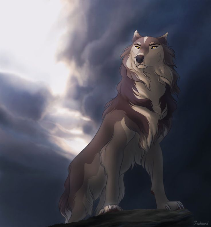 657 best Anime Wolves images on Pinterest  Anime wolf Anime