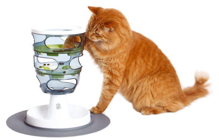 Labyrinthe à croquettes pour chat : encourage le chat à jouer et à se dépenser pour manger