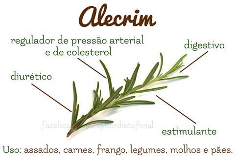 Use o Alecrim em suas receitas!