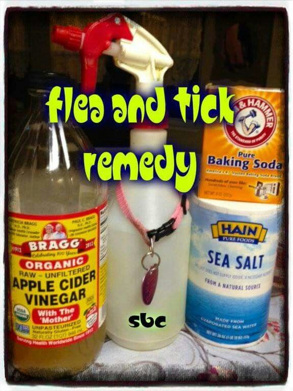 Flea & Tick Remedy: 8oz Apple Cider ● 4oz Warm Water ● 1/2 tsp Salt ● 1/2 Baking Soda ● Spray Bottle ●