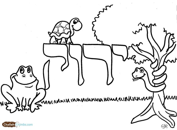 Colors in Hebrew - Coloring Pages