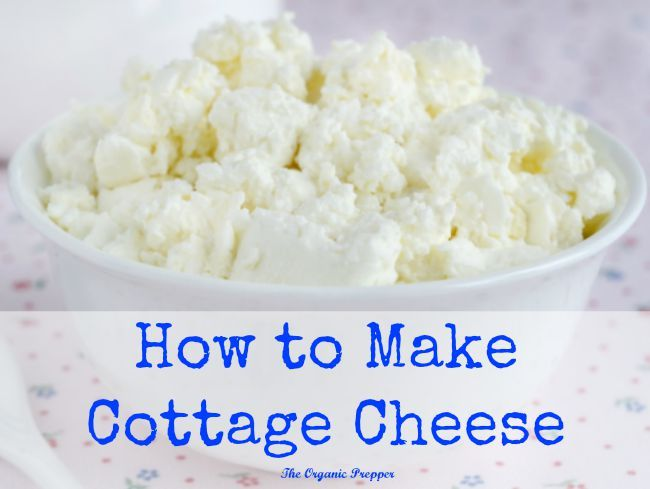 Good Homemade Cottage Cheese | Recipe | Homemade Cottage Cheese, Cottage Cheese  And Cheese
