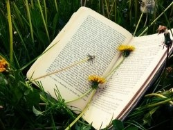 i like readings,after a looooooooong reading on different kinds of book,i finally try to make this lens,and may u like this,thanks  Feel free to...