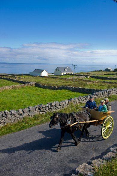 IRELAND: INISHMORE, ARAN ISLANDS Eu quero morar aí! O mar, o verde, o frio, o cavalo e a charrete! Amo muito tudo isso! <3