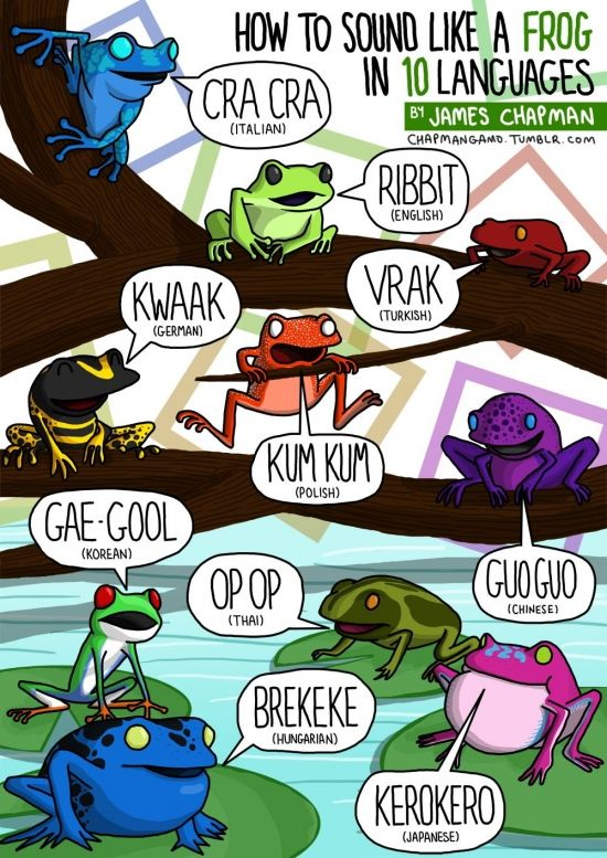 Illustrations of sounds animals make, in different languages