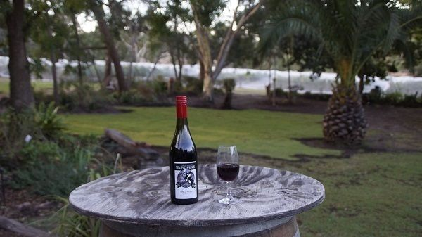 Celebrating our new garden space!! Lots of room to bring your friends. Come... make a day of it - bring a picnic.#wine #art #coffee  @ahwineregion @visit fleurieu peninsula #AdelHills  #southaustralia  #openminds  #bestbackyard #vineyardlife #beautifuldestinations #cellardoor #gallery #eclectic #insideshouthaustralia #southaussie #SAWine #liveauthentic wonderful_places