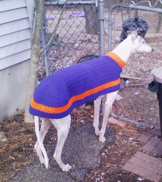 Knitting Patterns For Greyhound Dogs : Greyhound Sweater Team Colors Jersey Crochet by AerieDesigns, USD6.00 My Styl...