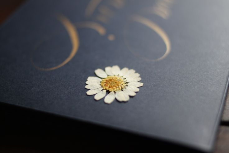 #envelope #invitation #creativity #daisy #pressedflowers #herbier