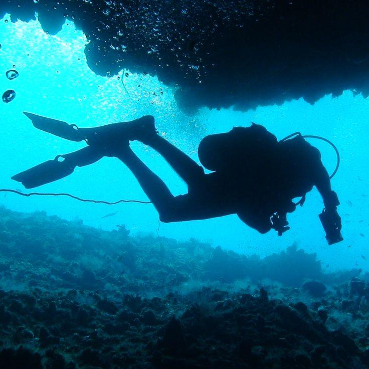 Pemba's underwater world is extraordinary! The Manta Resort, #Mozambique #BucketList #Beach #Safari #Africa #Holiday #Travel #Ocean #Adventure #Diving #Island #Swim