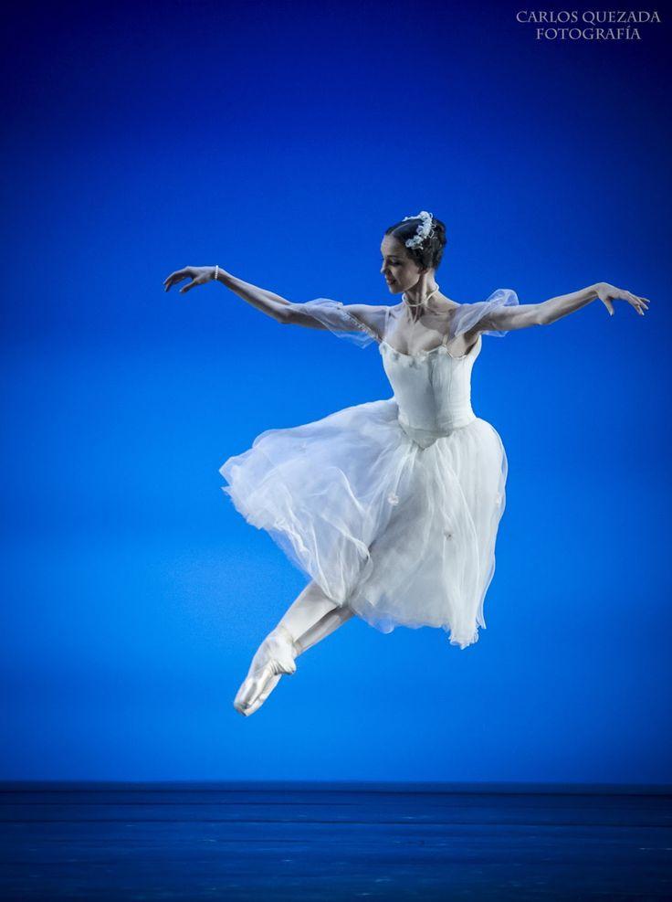 1400 best Ballet Beautiful images on Pinterest
