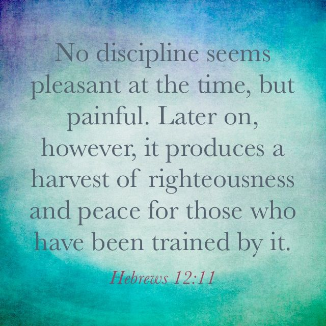 easy essay on self discipline bible verses