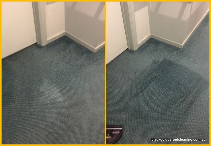 Milk stains need specialist treatment or the bacteria remains in the carpet pile and creates odour