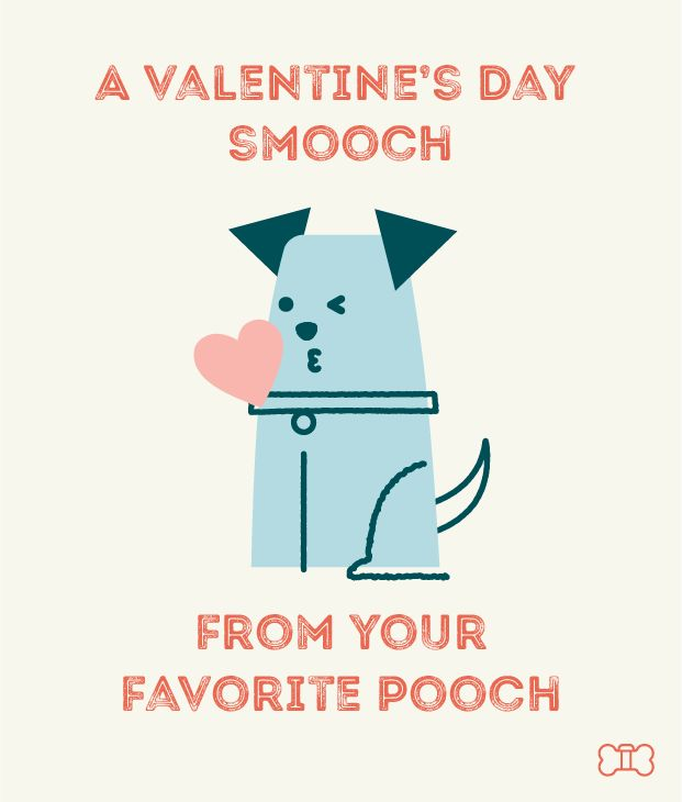 Finally, A Valentine's Day Card from the Dog! | DogVacay Official Blog