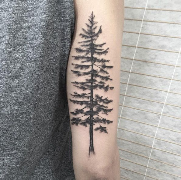 50 awesome ink ideas for women pine tree tattoo and tattoo for Pine tree tattoo ideas