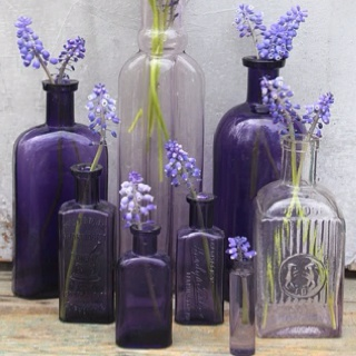 glass bottles + fresh flowers = super simple decor :)