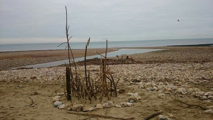 Driftingwild beach school at Charmouth, Dorset. Beach driftwood sculptures.