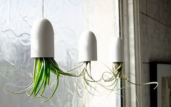 diy h ngende pflanzen h ngende g rten pinterest selber machen. Black Bedroom Furniture Sets. Home Design Ideas