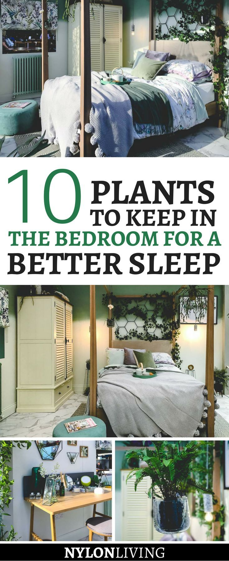 Are you a plant lover? Did you know that keeping plants in your bedroom actually improves your sleep? Check out these decor ideas for a plant lover bedroom. From hanging plants to a terrarium instead of a traditional night table, you'll find lots of plant decor ideas. | plants for the bedroom | plant decor bedroom | plant design interior | plant interior design | bedroom design plants | plant lover aesthetic #plants #bedroomdesign - via @nylonliving