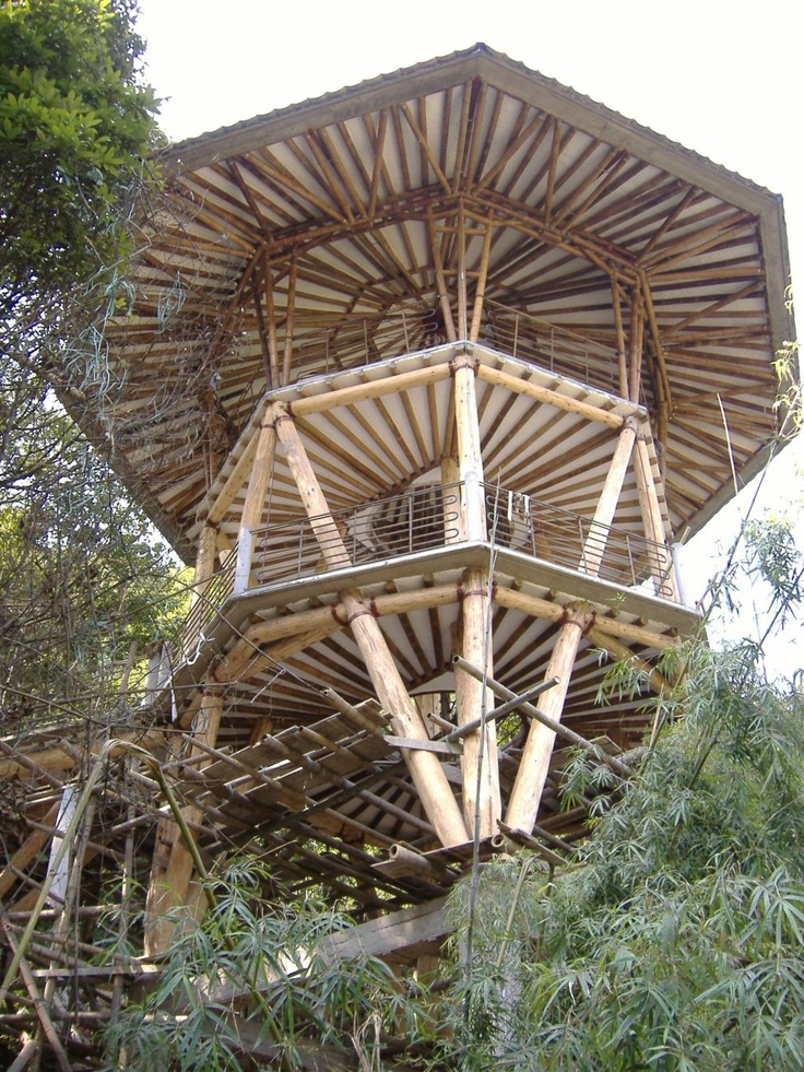 Circular Tree House 2414 best ༺♥༻ treehouse༺♥༻ images on pinterest